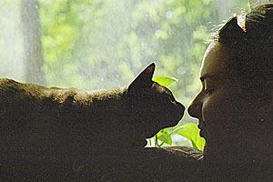 Кот барсик и девушка Маша.