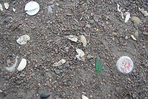 Микромир с мусором