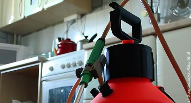 Аппарат для распыления средства от клопов. Почему-то он всегда связан у фотографов с кухней. В память о тараканах, вероятно.