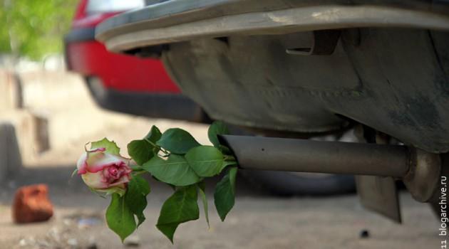 Роза в выхлопной трубе ВАЗ 21011.