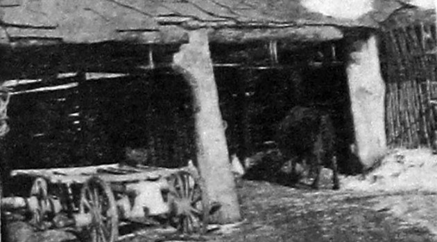 Такой двор крестьянина считался современным и благоустроенным в двадцатых годах в СССР.