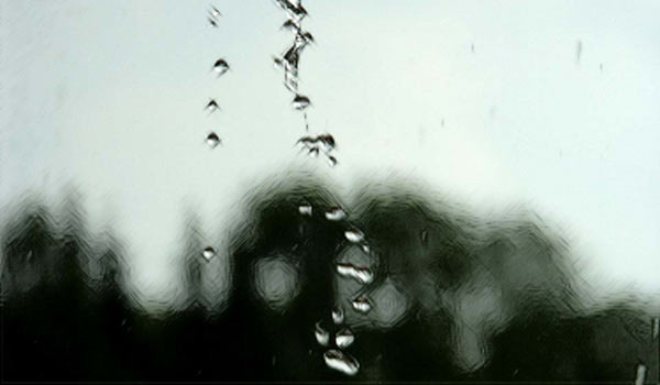 Течет с небес вода обыкновенная