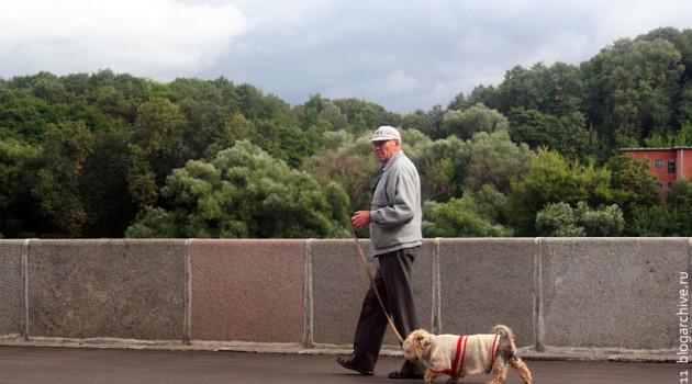 Человек с собакой на поводке. Набережная Москвы-реки.