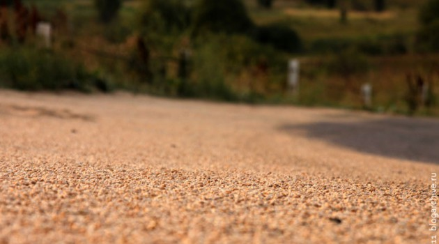 Русское зерно на дороге. 2010 год.