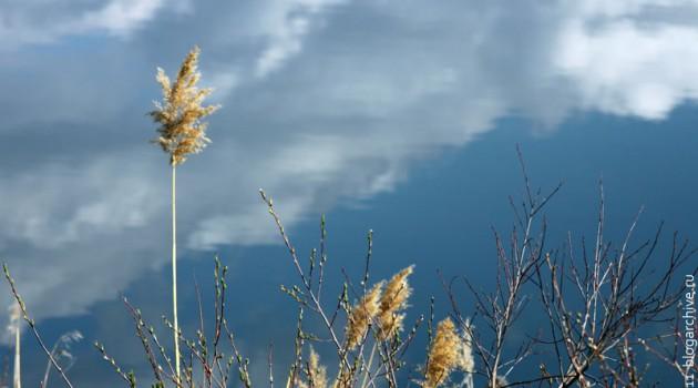 Отражение неба.